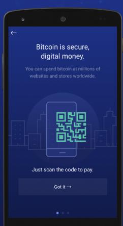 Bitpay, BitPay Inc